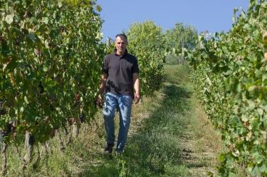 Bisi_Claudio-in-vigna-20111.jpg
